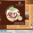 Thiết kế và in 2000 tờ rơi Nấm linh chi