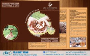 Mẫu in tờ rơi quảng cáo nấm linh chi với tông màu chủ đạo là màu nâu đặc trưng của nấm.